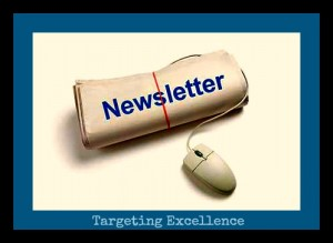 TargetingExcellence-Newsletter